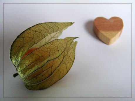 BLOG-IMG_1245-amour en cage et coeur bois