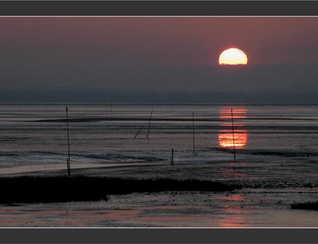 BLOG-DSC_6547-couchant Bassin marée basse