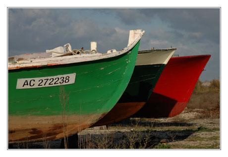 BLOG-DSC_7801-pinasses chantier naval Meyran