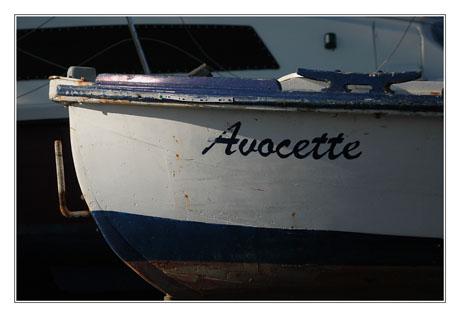 BLOG-DSC_7841-pinasse Avocette et bateau plaisance