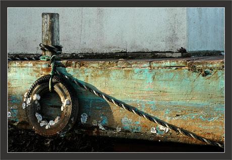 BLOG-DSC_7955-pneu plate verte laTeste