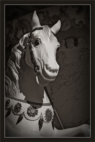 BLOG-DSC_8057-cheval manège Eyrac sépia V