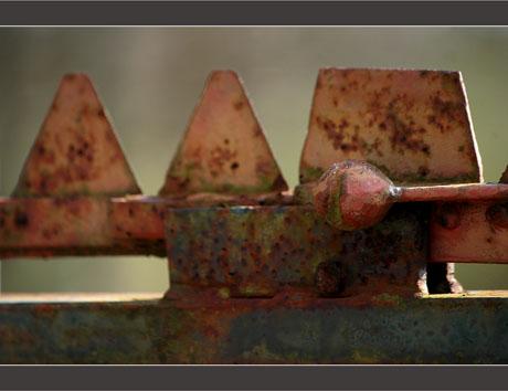 BLOG-DSC_8665-barrière plaines du Teich