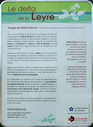 BLOG-DSC_8732-rec-delta de la Leyre-photos Sabine Delcour