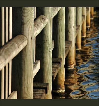 BLOG-DSC_8979-pont bois des plaines