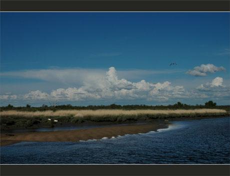 BLOG-DSC_9045-Leyre et nuages