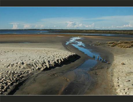 BLOG-DSC_9075-estey, plage, embouchure Leyre et Bassin
