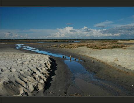 BLOG-DSC_9077-estey, plage, embouchure Leyre
