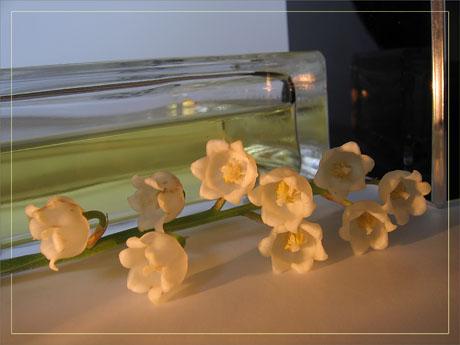 BLOG-IMG_1309-parfum et muguet