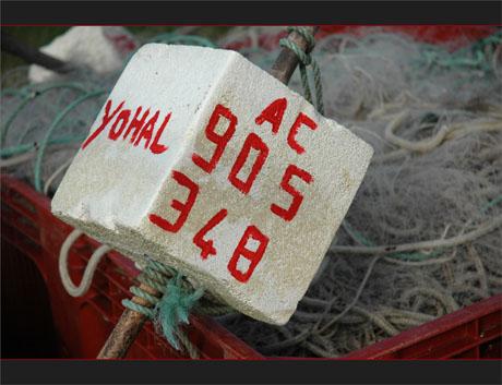 BLOG-DSC_7886-Yohal