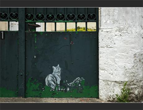 BLOG-DSC_9611-chat de garde portail