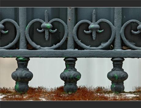 BLOG-DSC_9634-grille et mur mousse