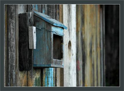 BLOG-DSC_6208-boîte à lettre 24 le Canal
