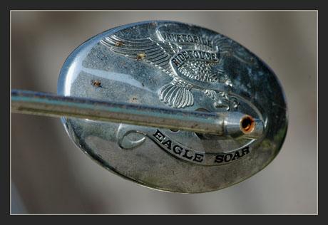 BLOG-DSC_9999-retro eagle