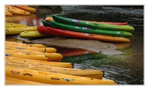 BLOG-DSC_0133 -canoe Leyre Mios