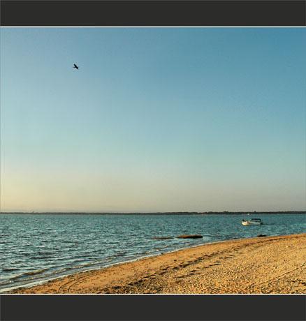 BLOG-DSC_0244-plage du Teich, bateau, vol cormoran