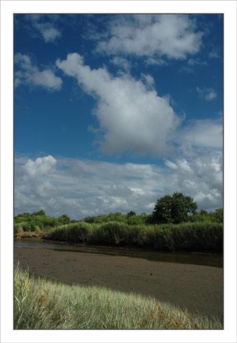 BLOG-DSC_0483-canal Certes et rivage graveyron