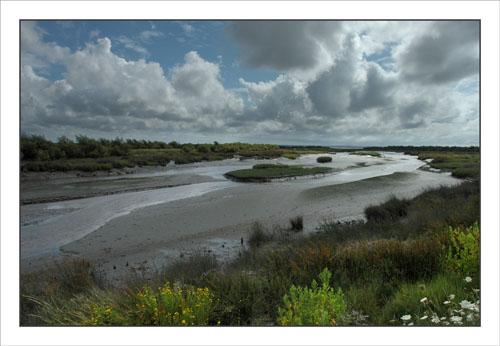 BLOG-DSC_0493-canal de Certes marée basse et sentier Graveyron
