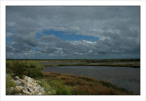 BLOG-DSC_0545-embouchure canal Certes et début digue