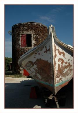 BLOG-DSC_0706-Papillon et tour Larros