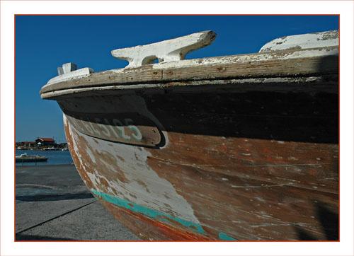 BLOG-DSC_0712-Papillon et port Larros