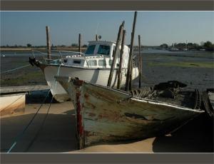 BLOG-DSC_1537-épave et bateau Aiguillon la Teste