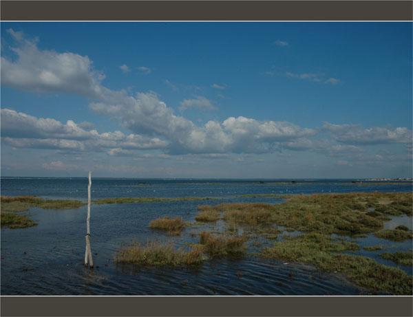 BLOG-DSC_1677-piquet Meyran, Bassin face Gujan et Larross