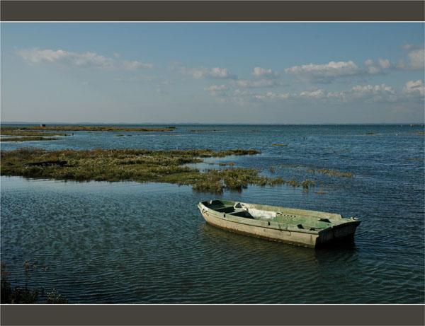 BLOG-DSC_1703-barque Meyran Est et herbiers face presqu'île