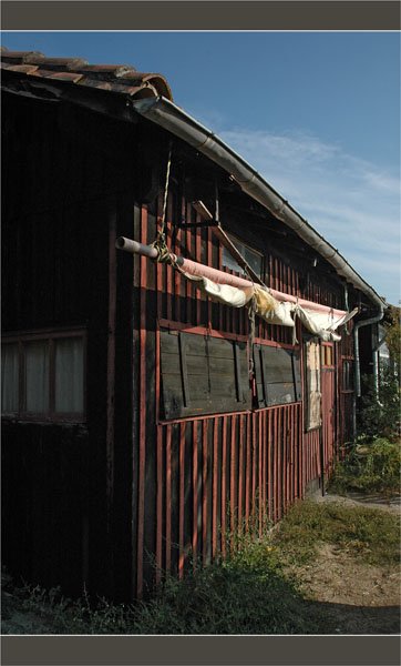BLOG-DSC_1729-cabane Aiguillon lapin blanc