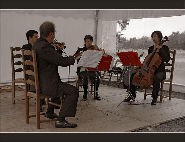 BLOG-DSC_1789-quartet Mascaret château Ruat le Teich rouge & sépia