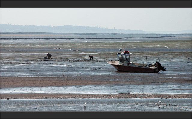 BLOG-DSC_1926-bateau ramasseurs coquillage face Arcachon
