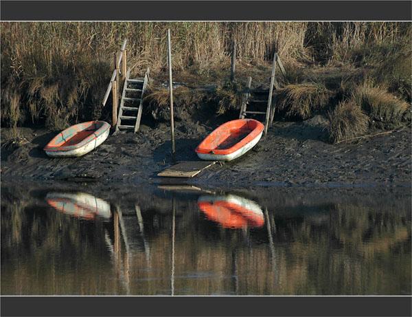 BLOG-DSC_1998-barques oranges,roseaux Leyre île Malprat