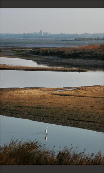 BLOG-DSC_2020-banc sable Leyre et château d'eau Audenge