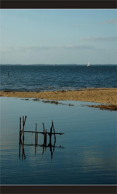 BLOG-DSC_2320-piquets plage le Teich