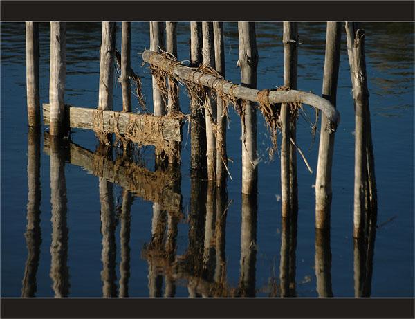 BLOG-DSC_2330-piquets écluse le Teich