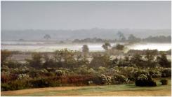 BLOG-DSC_5463-brume plaines Teich