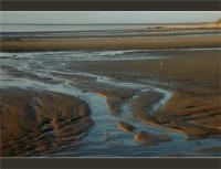 BLOG-DSC_2755-sillons plage du Teich