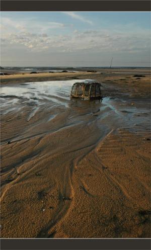 BLOG-DSC_2758-panier de crabe plage du Teich