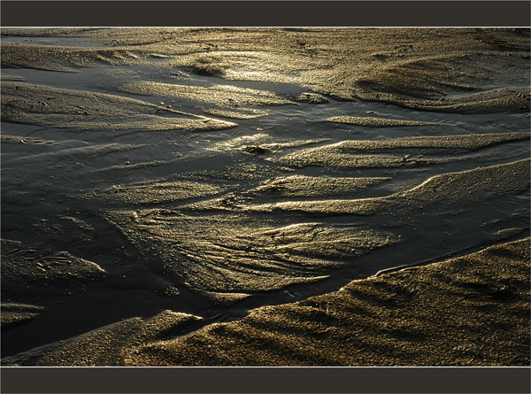 BLOG-DSC_2772-sable d'or