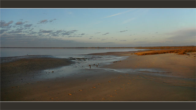 BLOG-DSC_2785-marée descendante herbiers plage du Teich