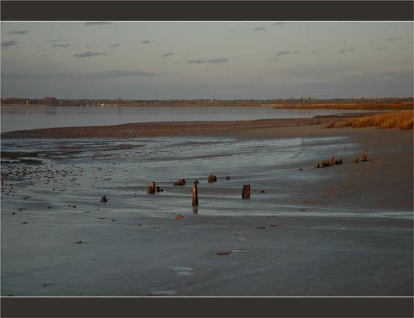 BLOG-DSC_2786-marée descendante herbiers plage du Teich