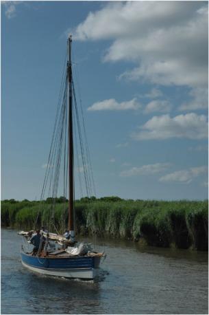 BLOG-DSC_8005-les copains à bord Leyre le Teich