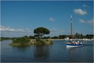 BLOG-DSC_8027-les copains à bord port du Teich régate des maires