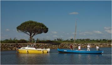 BLOG-DSC_8035-pinassotte le Coudey port le Teich régate des maires