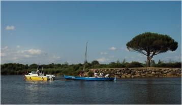 BLOG-DSC_8037-pinassotte le Coudey port le Teich régate des maires