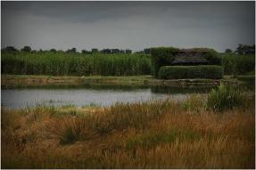 BLOG-DSC_8588-tonne chasse plaines du Teich