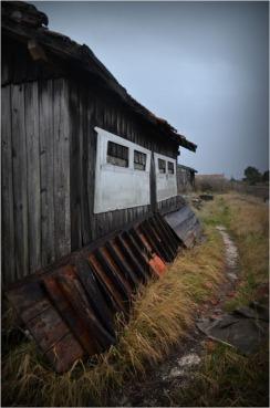 BLOG-DSC_01426-cabane et sentier berges canalot port la Teste