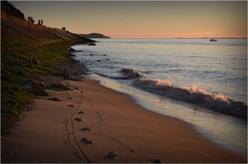 BLOG-DSC_01609-traces cyclistes fin plage et corniche Pyla