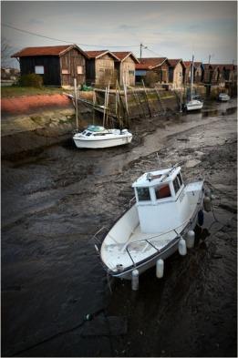 BLOG-DSC_02163-marée basse port du Canal