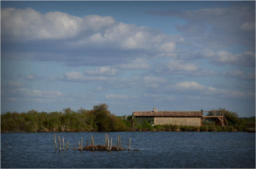 BLOG-DSC_04227-lagune et cabane parc ornitho le Teich